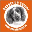 Badge Adoptiicaini.ro 125
