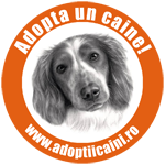 Badge Adoptiicaini.ro 150