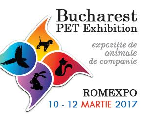 Pet Expo